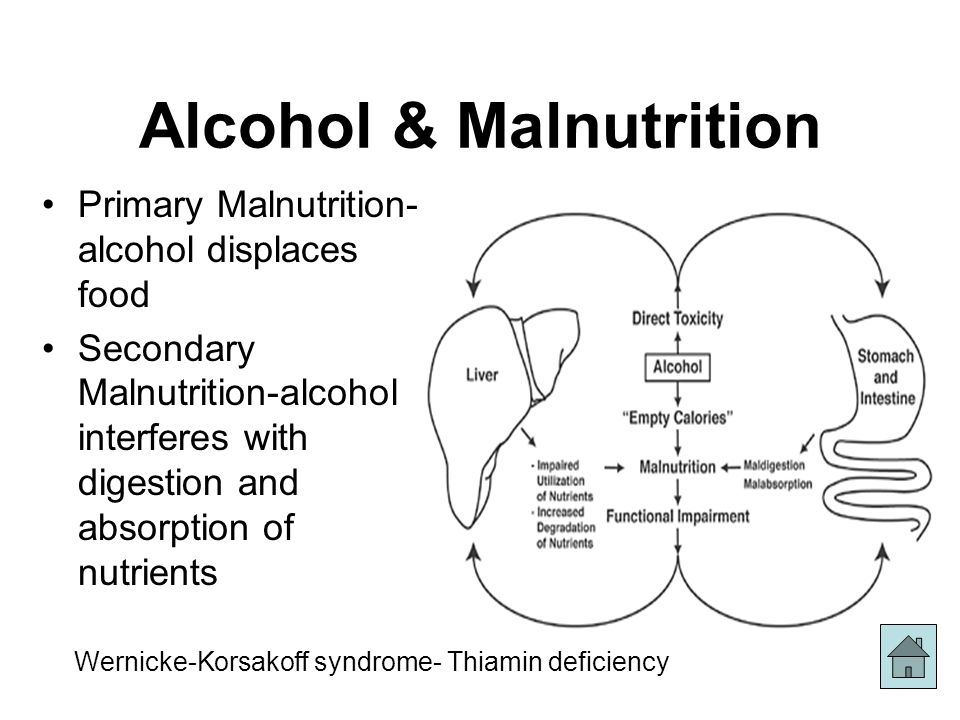 Alcohol and Nutrition Beverages Brain Absorption Liver Liver ...