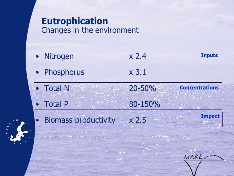 Eutrophication Changes in the environment Nitrogen x 2.4 Phosphorusx 3.1 Total N20-50% Total P80-150% Biomass productivityx 2.5 Inputs Concentrations Impact