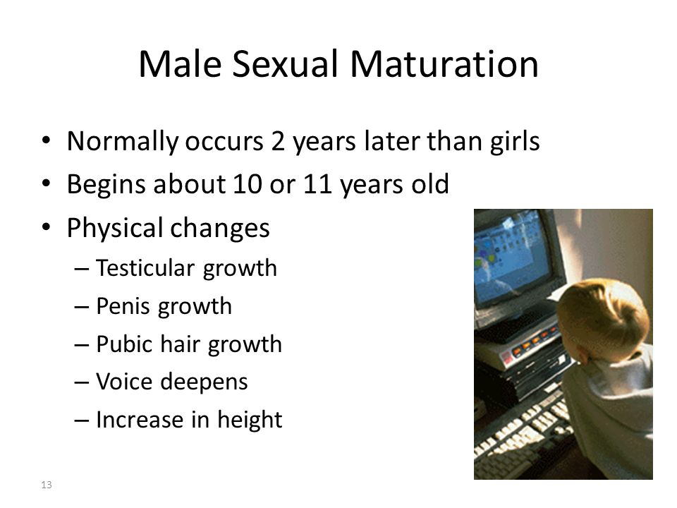 Male Sexual Maturation 13 Normally occurs 2 years later than girls Begins about 10 or 11 years old Physical changes – Testicular growth – Penis growth