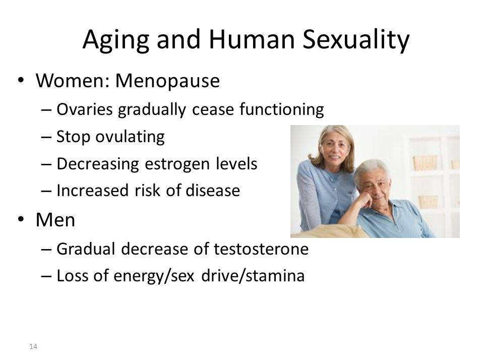 Aging and Human Sexuality 14 Women: Menopause – Ovaries gradually cease functioning – Stop ovulating – Decreasing estrogen levels – Increased risk of