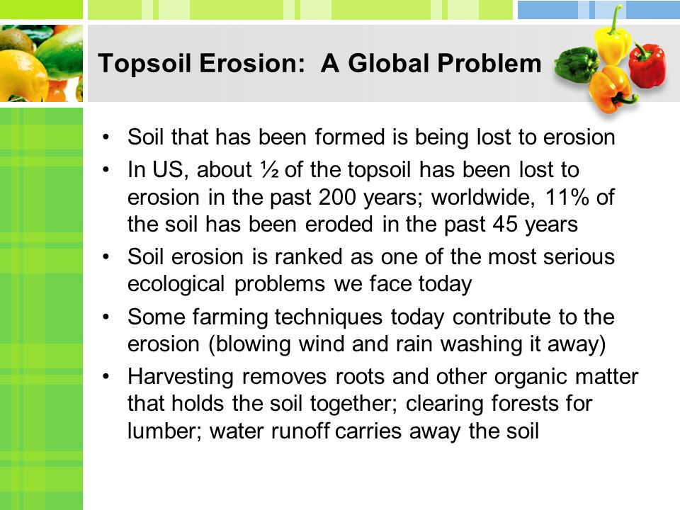 Topsoil Erosion: A Global Problem Soil that has been formed is being lost to erosion In US, about ½ of the topsoil has been lost to erosion in the past 200 years; worldwide, 11% of the soil has been eroded in the past 45 years Soil erosion is ranked as one of the most serious ecological problems we face today Some farming techniques today contribute to the erosion (blowing wind and rain washing it away) Harvesting removes roots and other organic matter that holds the soil together; clearing forests for lumber; water runoff carries away the soil