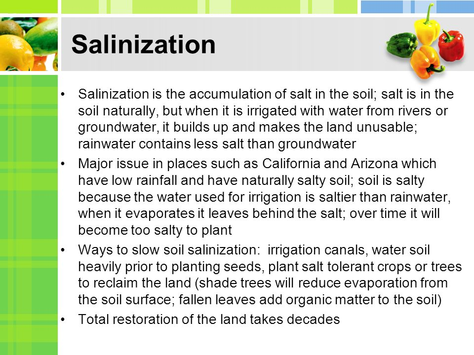 Salinization Salinization is the accumulation of salt in the soil; salt is in the soil naturally, but when it is irrigated with water from rivers or groundwater, it builds up and makes the land unusable; rainwater contains less salt than groundwater Major issue in places such as California and Arizona which have low rainfall and have naturally salty soil; soil is salty because the water used for irrigation is saltier than rainwater, when it evaporates it leaves behind the salt; over time it will become too salty to plant Ways to slow soil salinization: irrigation canals, water soil heavily prior to planting seeds, plant salt tolerant crops or trees to reclaim the land (shade trees will reduce evaporation from the soil surface; fallen leaves add organic matter to the soil) Total restoration of the land takes decades