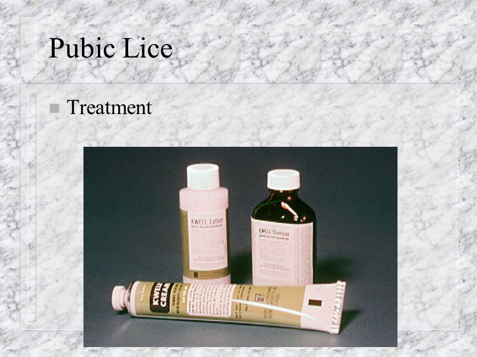Pubic Lice n Treatment