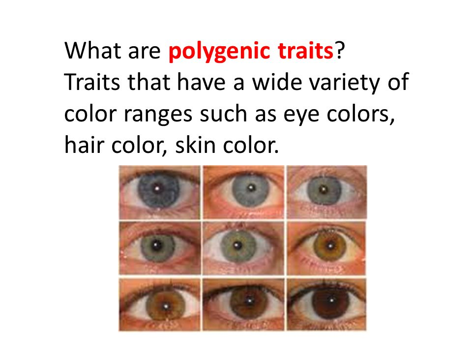 Traits that have a wide variety of color ranges such as eye colors, hair color, skin color.