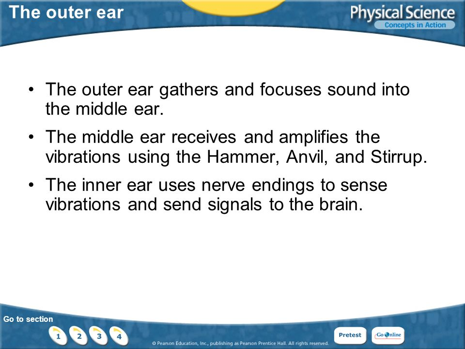 Go to section The outer ear The outer ear gathers and focuses sound into the middle ear.