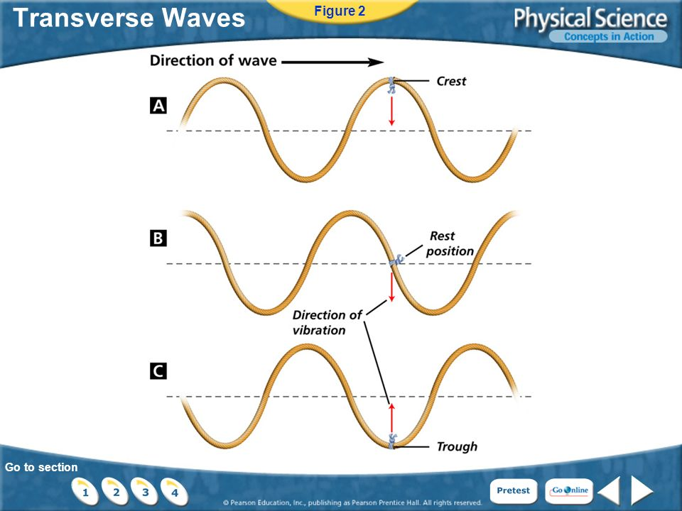 Go to section Transverse Waves Figure 2