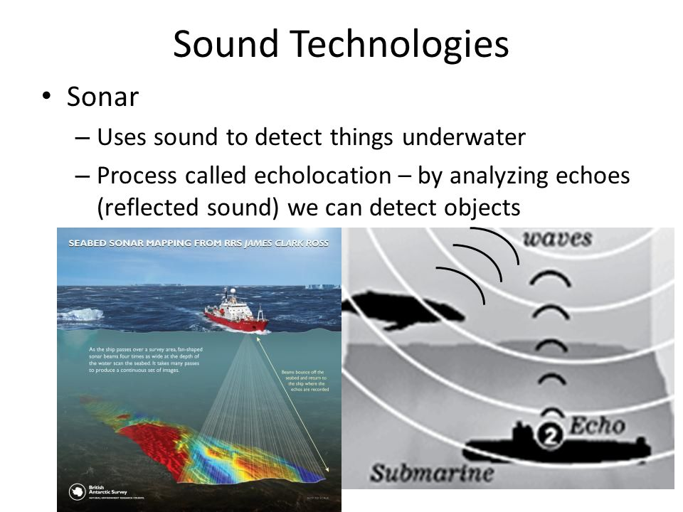 Sound Technologies Sonar – Uses sound to detect things underwater – Process called echolocation – by analyzing echoes (reflected sound) we can detect objects