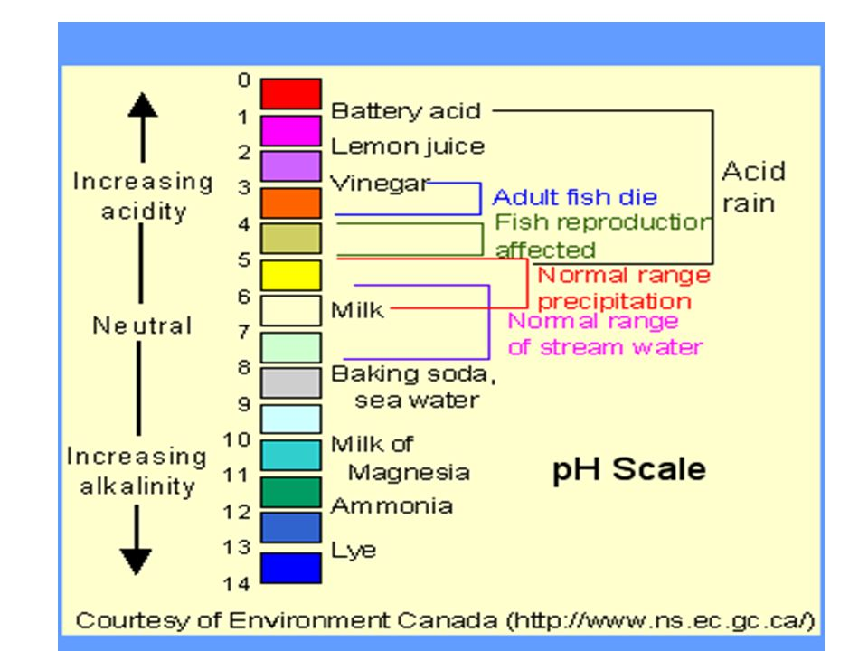 pH Scale (potential for Hydrogen)