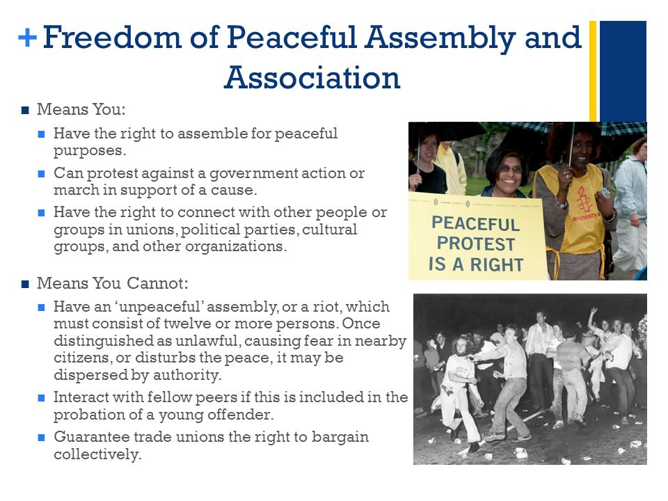 + Freedom of Peaceful Assembly and Association Means You: Have the right to assemble for peaceful purposes.