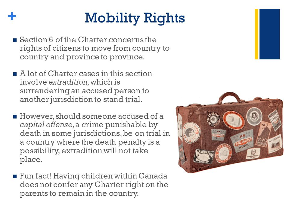 + Mobility Rights Section 6 of the Charter concerns the rights of citizens to move from country to country and province to province.