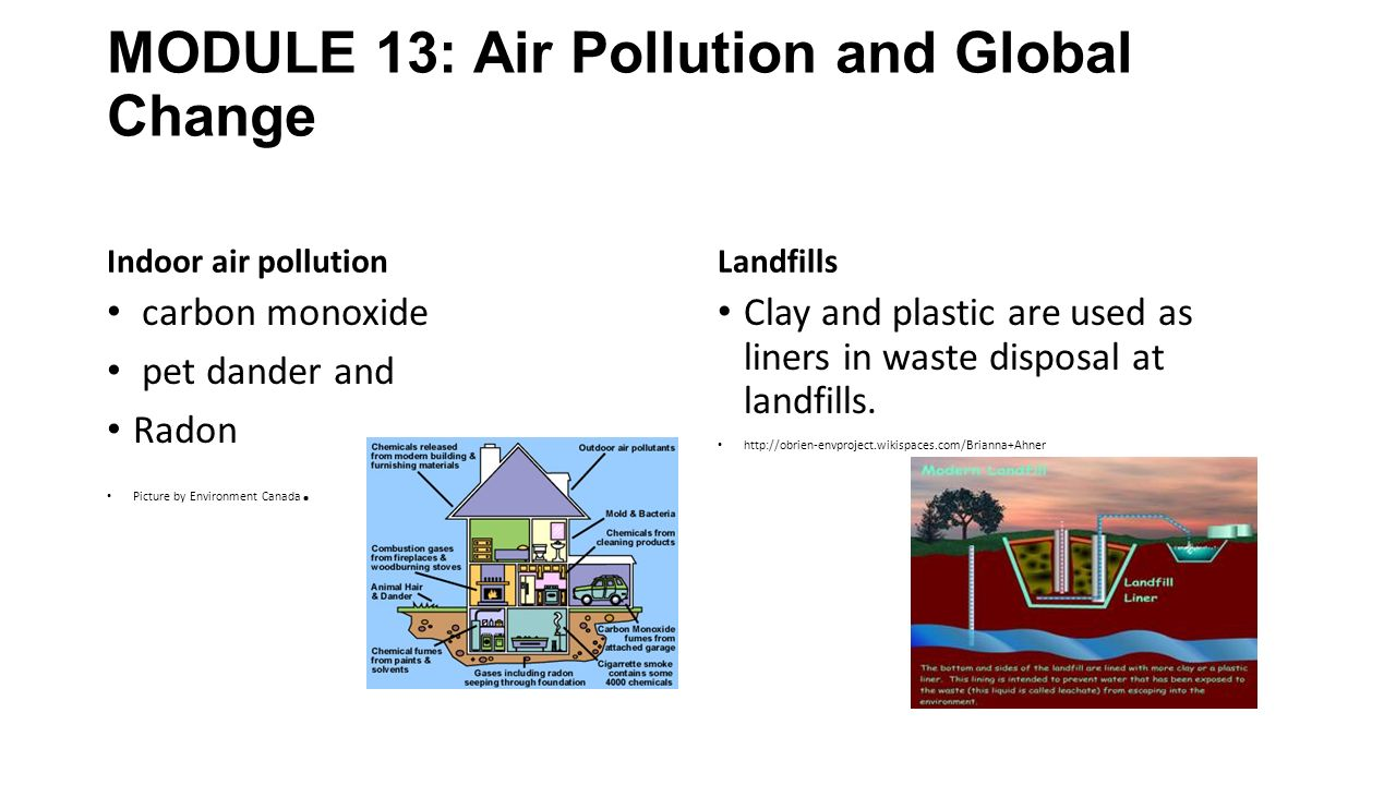 MODULE 13: Air Pollution and Global Change Indoor air pollution carbon monoxide pet dander and Radon Picture by Environment Canada.