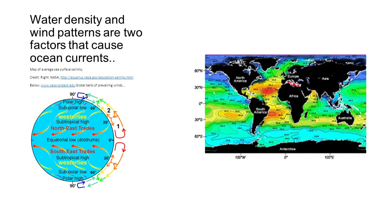 Water density and wind patterns are two factors that cause ocean currents..