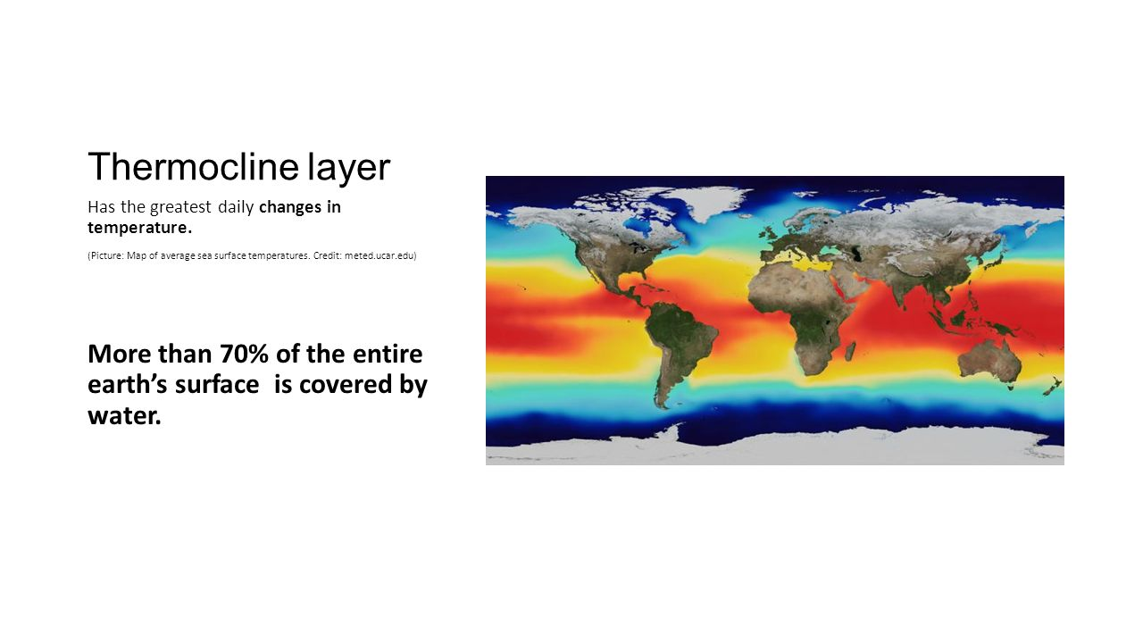 Thermocline layer Has the greatest daily changes in temperature.