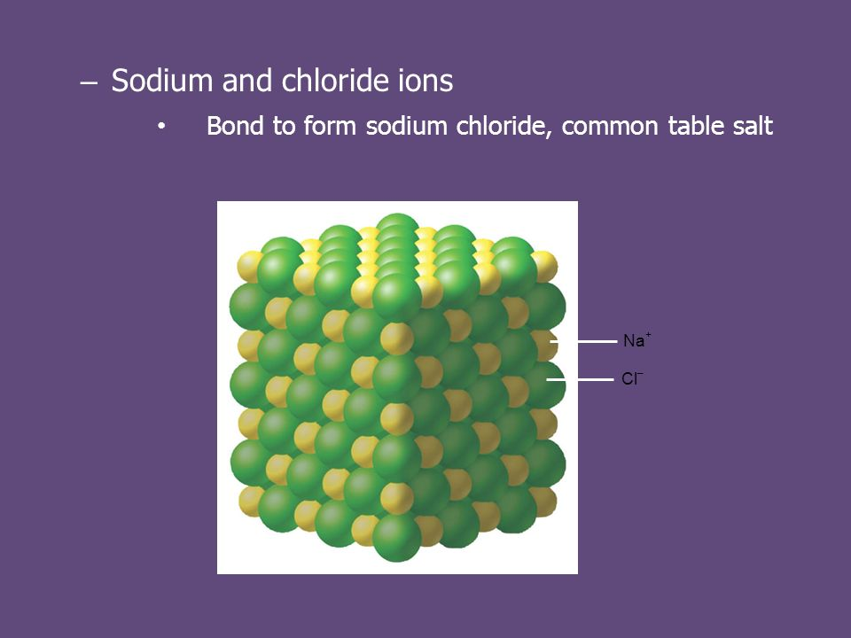 – Sodium and chloride ions Bond to form sodium chloride, common table salt Na + Cl –