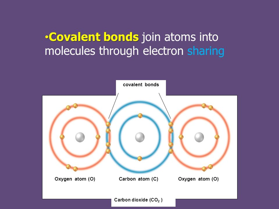 Covalent bonds Covalent bonds join atoms into molecules through electron sharing covalent bonds Oxygen atom (O)Carbon atom (C)Oxygen atom (O) Carbon dioxide (CO 2 )