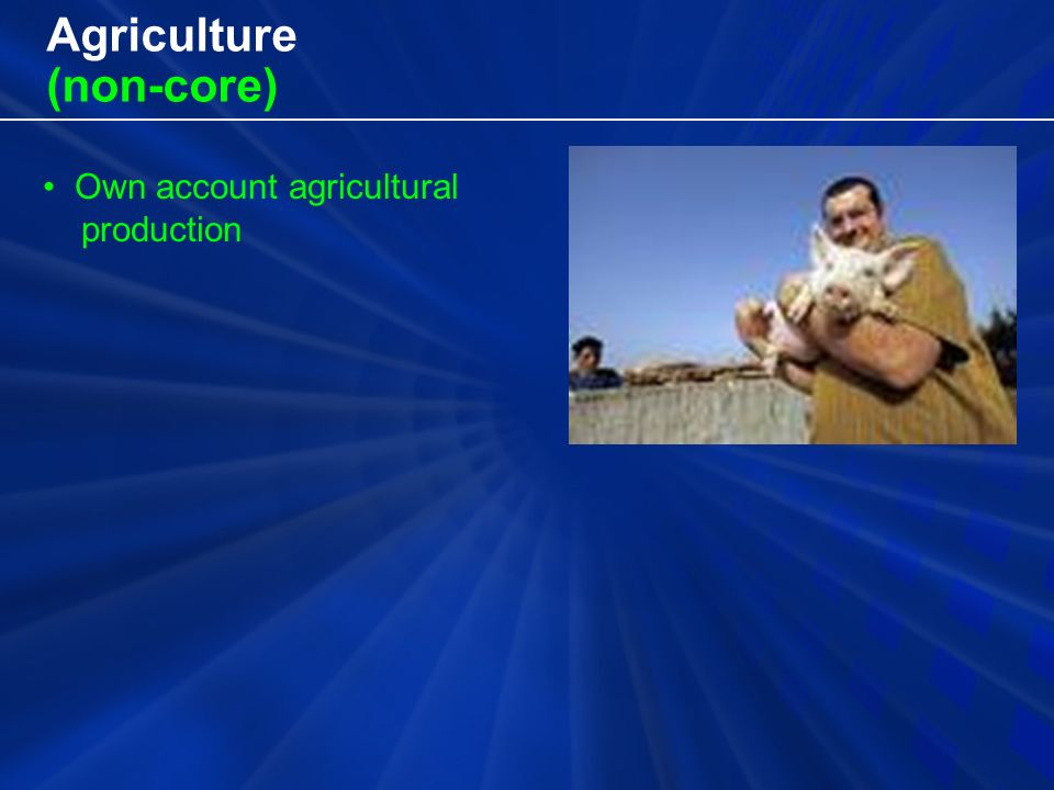 Agriculture (non-core) Own account agricultural production