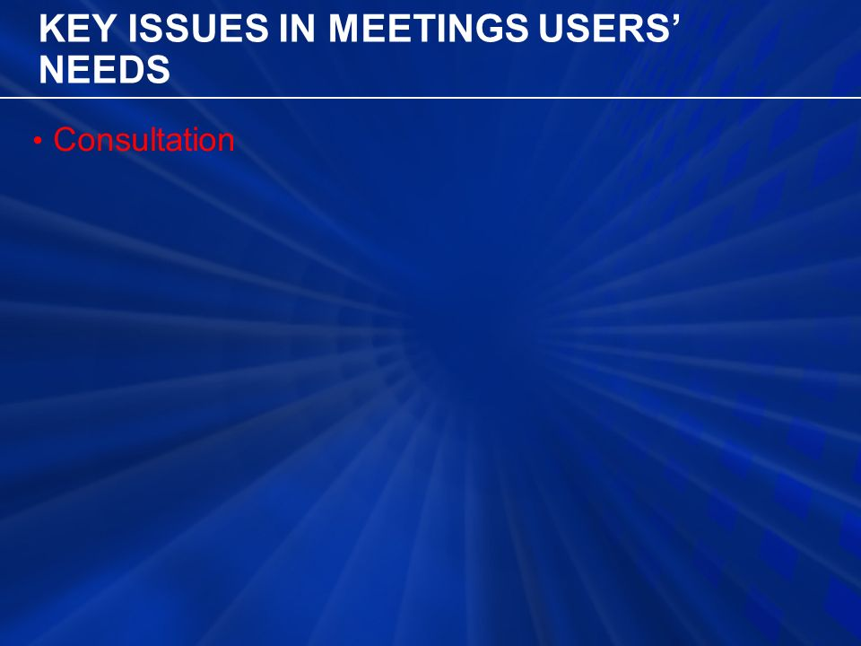 KEY ISSUES IN MEETINGS USERS' NEEDS Consultation