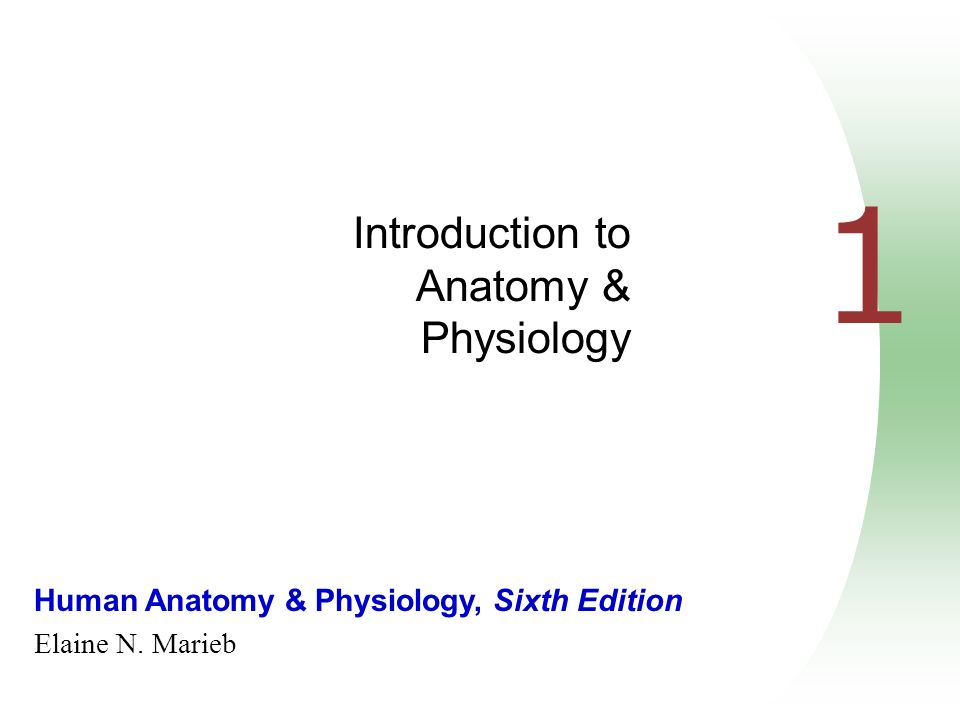 Human Anatomy & Physiology, Sixth Edition Elaine N. Marieb 1 ...