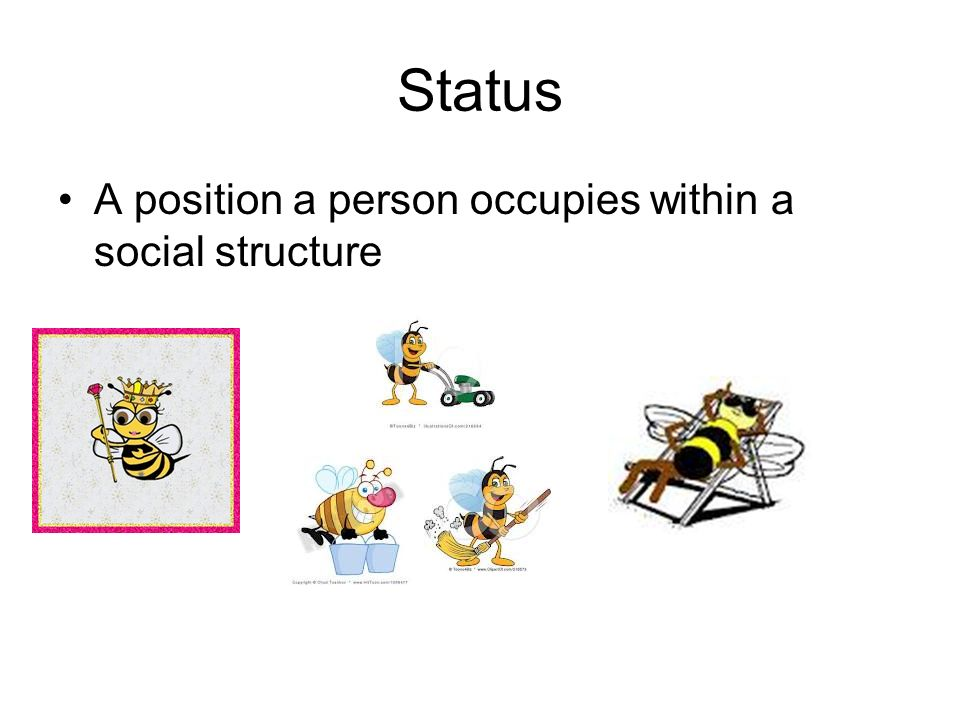 Status A position a person occupies within a social structure