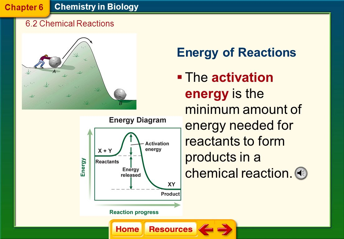 Example of a chemical equation: During cellular respiration, Glucose and oxygen react to form carbon dioxide and water.