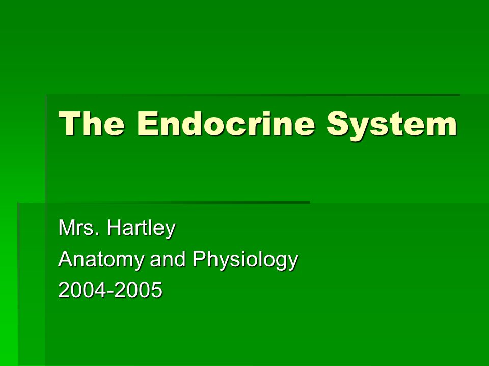 The Endocrine System Mrs. Hartley Anatomy and Physiology ppt download