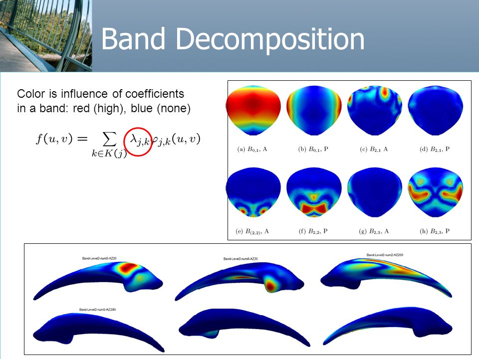 49 Band Decomposition Color is influence of coefficients in a band: red (high), blue (none)
