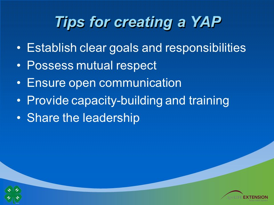 Tips for creating a YAP Establish clear goals and responsibilities Possess mutual respect Ensure open communication Provide capacity-building and training Share the leadership