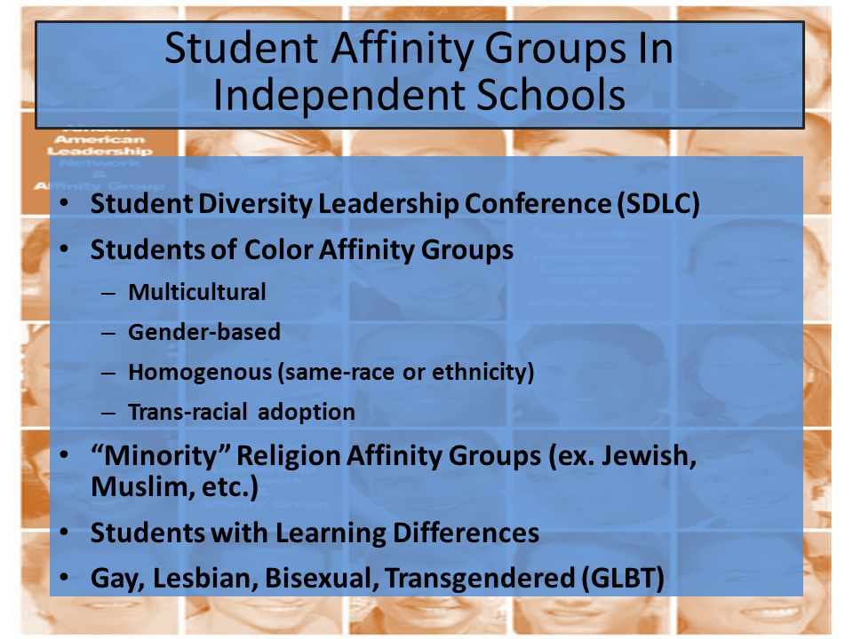 Student Diversity Leadership Conference (SDLC) Students of Color Affinity Groups – Multicultural – Gender-based – Homogenous (same-race or ethnicity) – Trans-racial adoption Minority Religion Affinity Groups (ex.