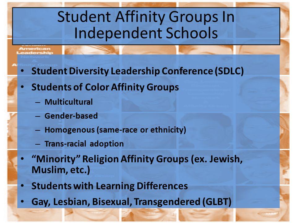 Student Diversity Leadership Conference (SDLC) Students of Color Affinity Groups – Multicultural – Gender-based – Homogenous (same-race or ethnicity)