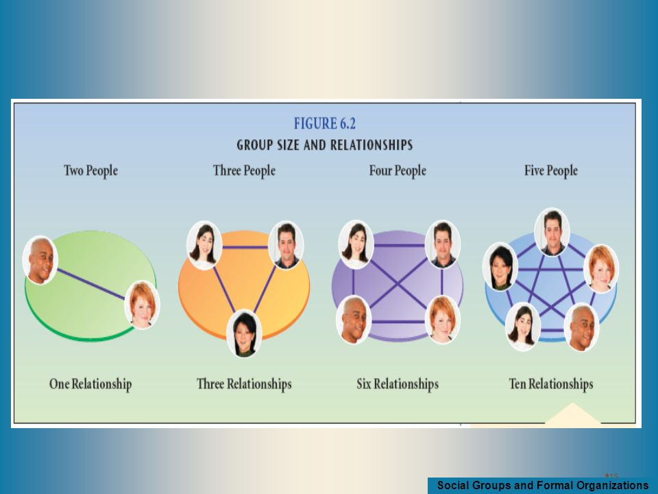 Social Groups and Formal Organizations  15