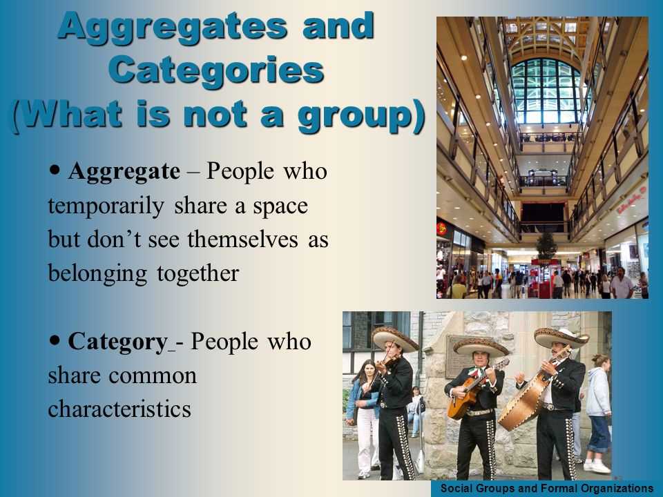 Social Groups and Formal Organizations Social Groups 1.Two or more people 2.Interact in patterned ways 3.Feeling of unity 4.Shared interests