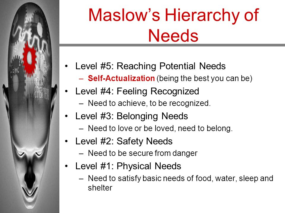 Maslow's Hierarchy of Needs Level #5: Reaching Potential Needs –Self-Actualization (being the best you can be) Level #4: Feeling Recognized –Need to a