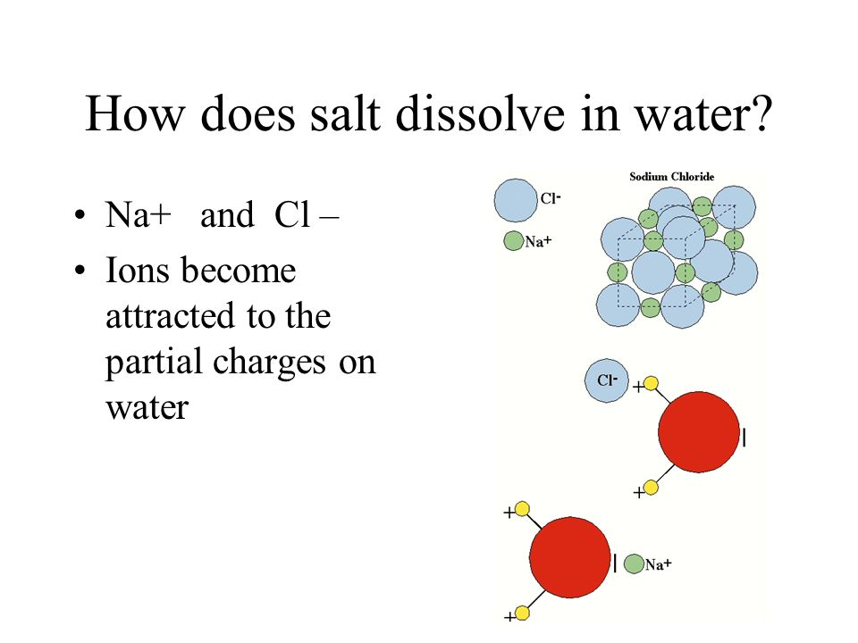 Hydrogen bonds Caused by partial positive and negative charges Water is best example ﮦ - ﮦ +
