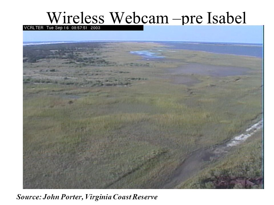 Wireless Webcam –pre Isabel Source: John Porter, Virginia Coast Reserve