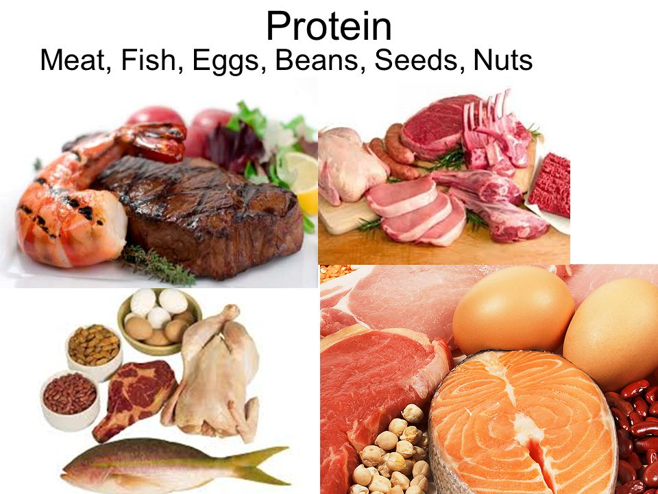 the importance of protein in the human body Proteins perform most of the work in the body including building the structure, regulating the functions of body's organs and tissues so, eating a diet rich of protein is very important for our health without dietary protein, growth and other essential bodily functions will not take place properly.