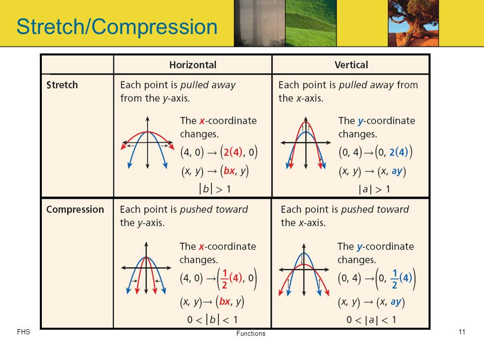 FHS Functions 11 Stretch/Compression