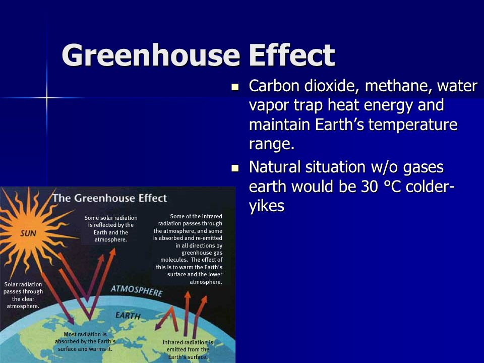 Biomes major biomes tropical rain forest tropical rain forest greenhouse effect carbon dioxide methane water vapor trap heat energy and maintain earths temperature sciox Images