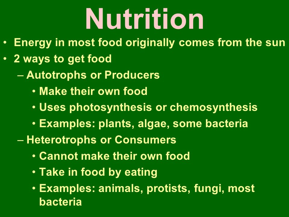 Nutrition Energy in most food originally comes from the sun 2 ways to get food –Autotrophs or Producers Make their own food Uses photosynthesis or chemosynthesis Examples: plants, algae, some bacteria –Heterotrophs or Consumers Cannot make their own food Take in food by eating Examples: animals, protists, fungi, most bacteria