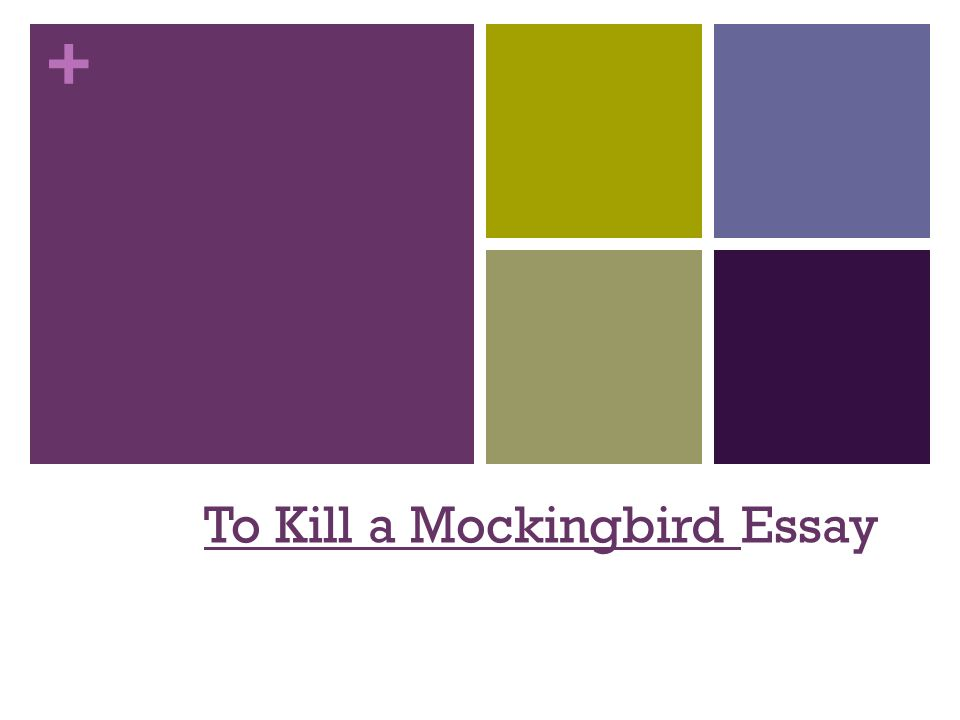 to kill a mockingbird essay    introduction attention getter  make      to kill a mockingbird essay