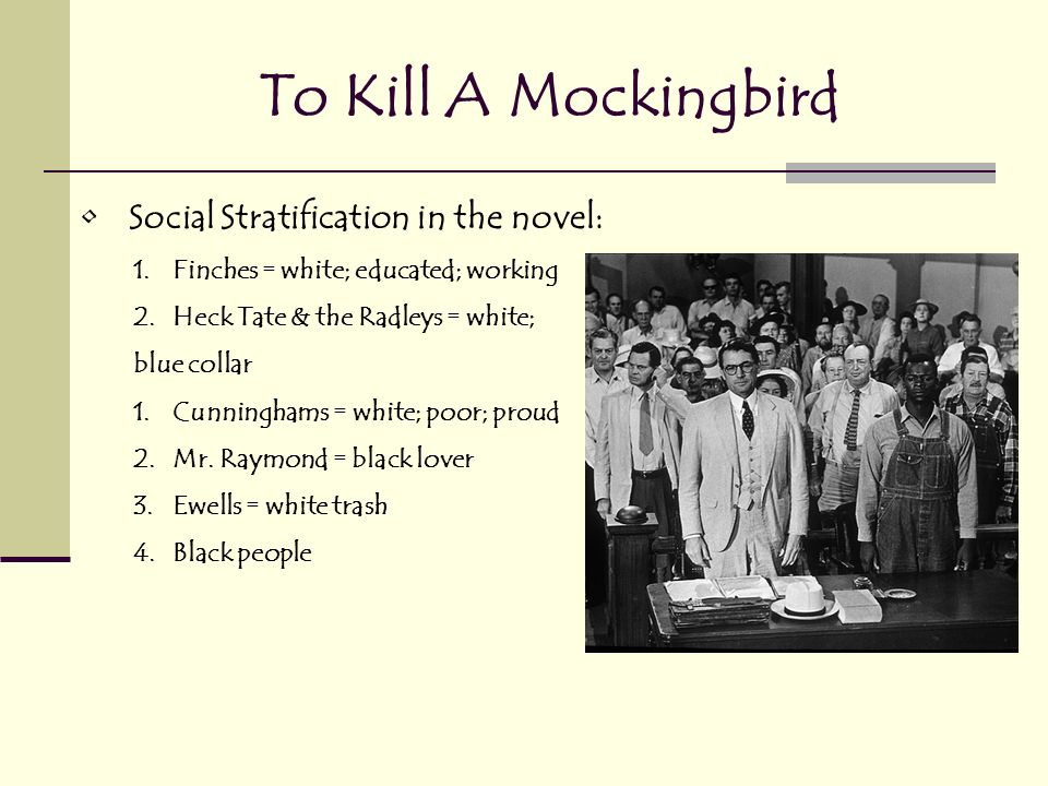 to kill mockingbird social and political issues To kill a mockingbird steam lesson brief state: and analyze to kill a mockingbird political and social values and.