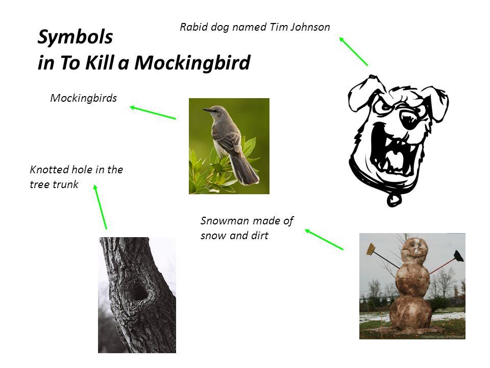 To Kill A Mockingbird Symbols And Meanings