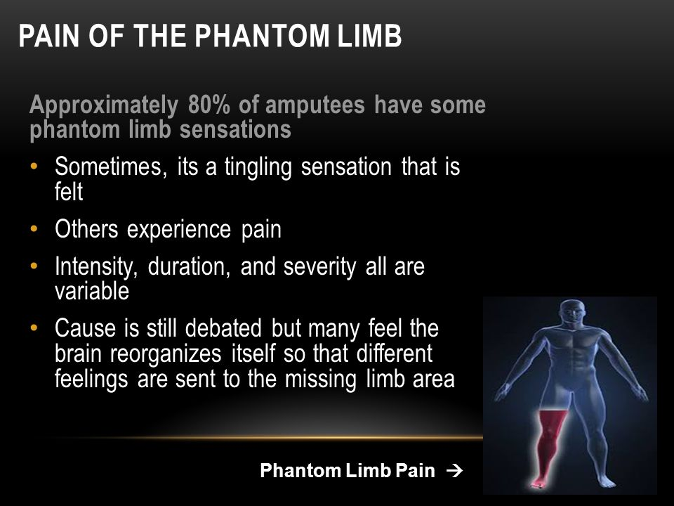 a study of the phantom limb phenomena Objectives: contentions exist regarding the true incidence of phantom limb pain (plp) and other associated post-amputation phenomena recognizing and understanding these phenomena would assist in the rehabilitation of amputees this study was designed to investigate all post-amputation phenomena in.