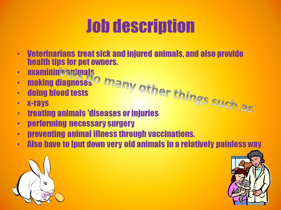 Veterinarian Click On It Job Description Veterinarians Treat Sick