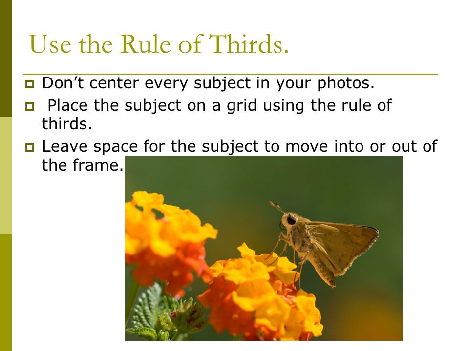 Use the Rule of Thirds.  Don't center every subject in your photos.