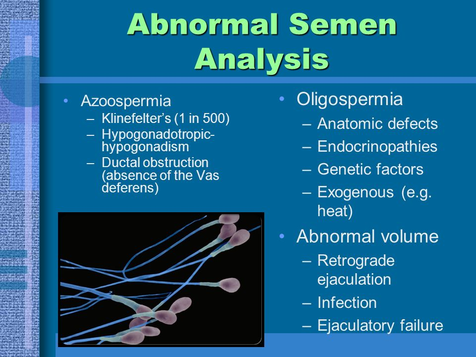 Abnormal Semen Analysis Azoospermia –Klinefelter's (1 in 500) –Hypogonadotropic- hypogonadism –Ductal obstruction (absence of the Vas deferens) Oligospermia –Anatomic defects –Endocrinopathies –Genetic factors –Exogenous (e.g.