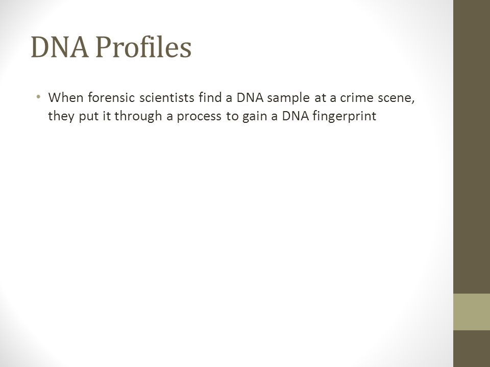 DNA Profiles When forensic scientists find a DNA sample at a crime scene, they put it through a process to gain a DNA fingerprint