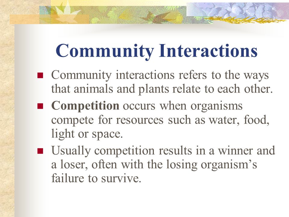 Community Interactions Community interactions refers to the ways that animals and plants relate to each other.