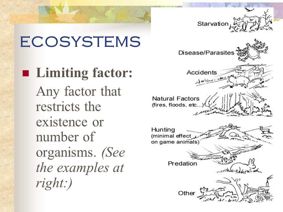 ECOSYSTEMS Limiting factor: Any factor that restricts the existence or number of organisms.