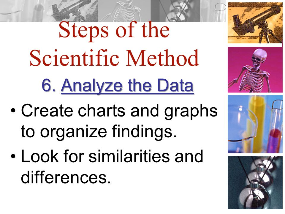 Steps of the Scientific Method 6. Analyze the Data Create charts and graphs to organize findings.