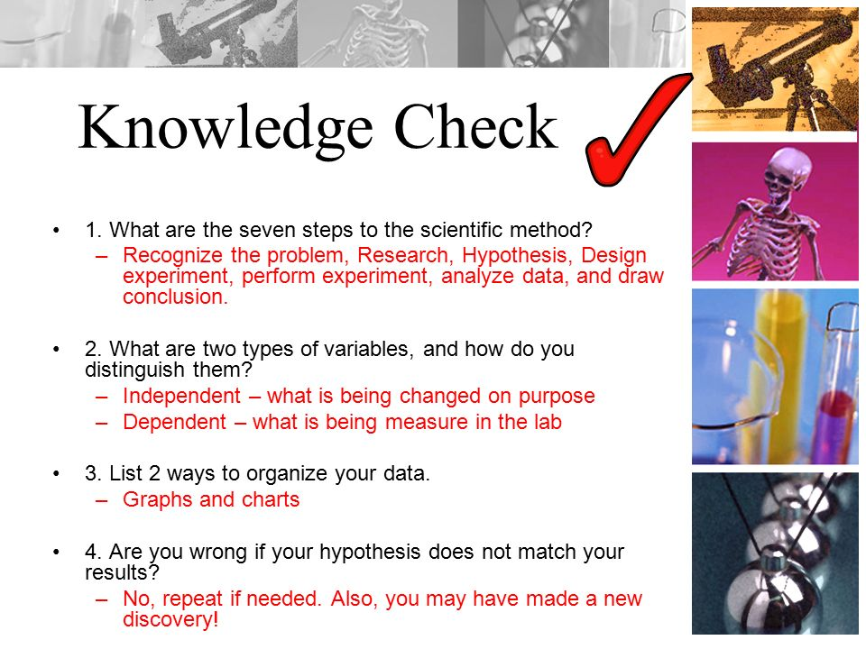 Knowledge Check 1. What are the seven steps to the scientific method.